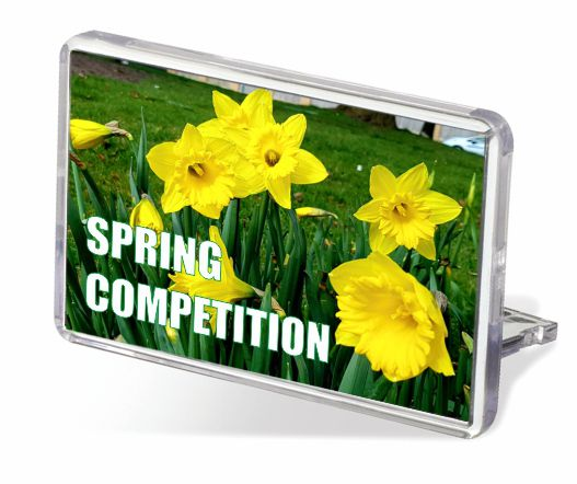 Celebrate Spring Competition